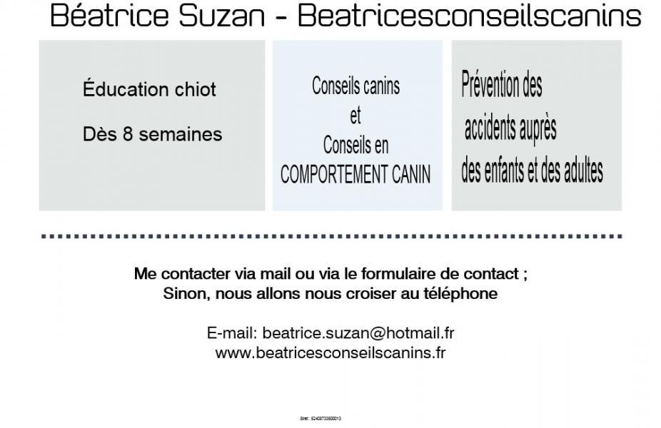 Carte contact beatricesconseilscanins