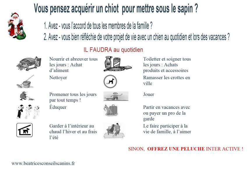 Carte protection chiot contre abandon