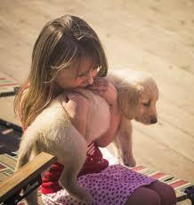 Enfant dog