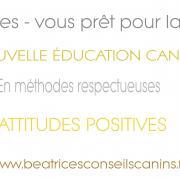 Carte education respectueuse