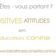 Carte positives attitudes education canine