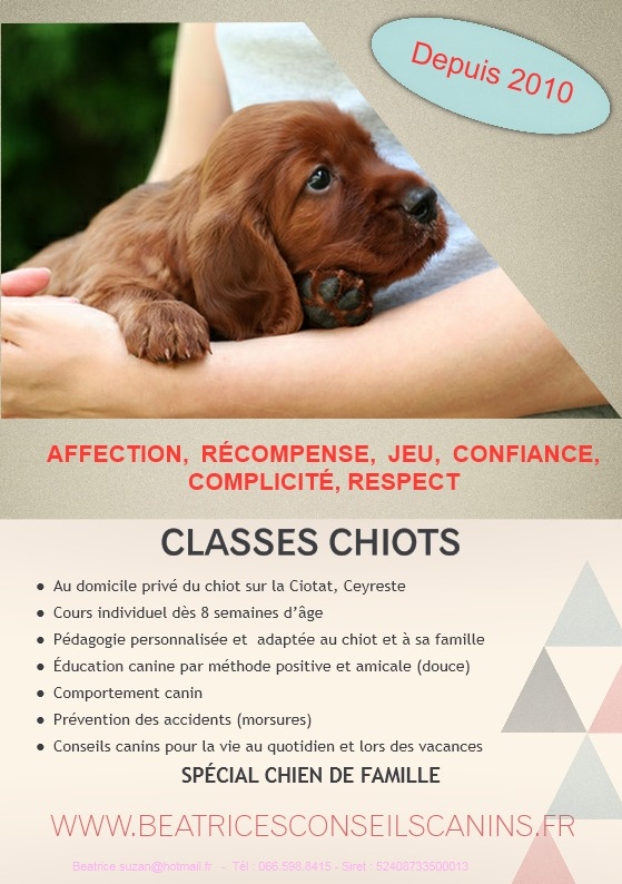 Classes chiots