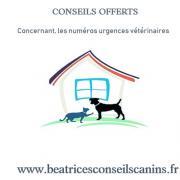 Conseils offerts numero urgence veterinaire