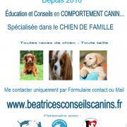 Contact beatricesconseilscanins
