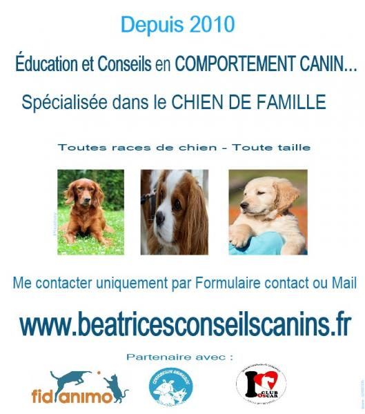 Contact beatricesconseilscanins