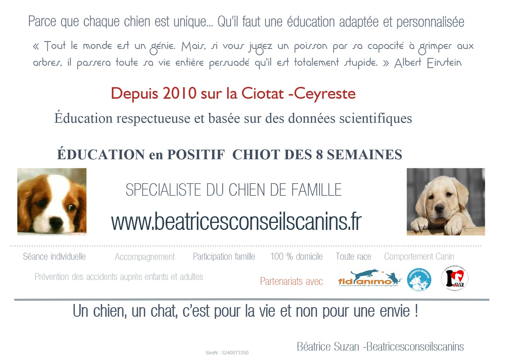 Presentation beatricesconseilscanins education