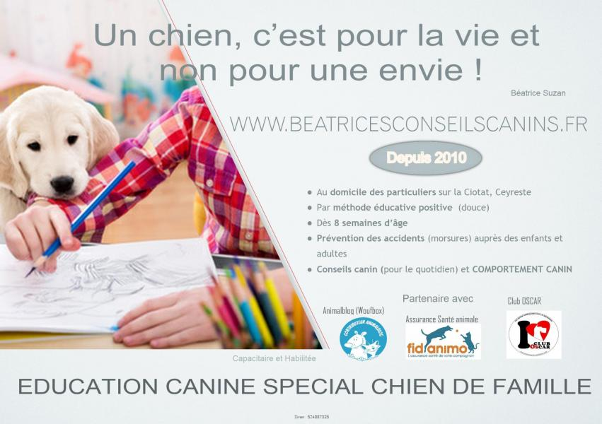 Pub beatricesconseilscaninslab